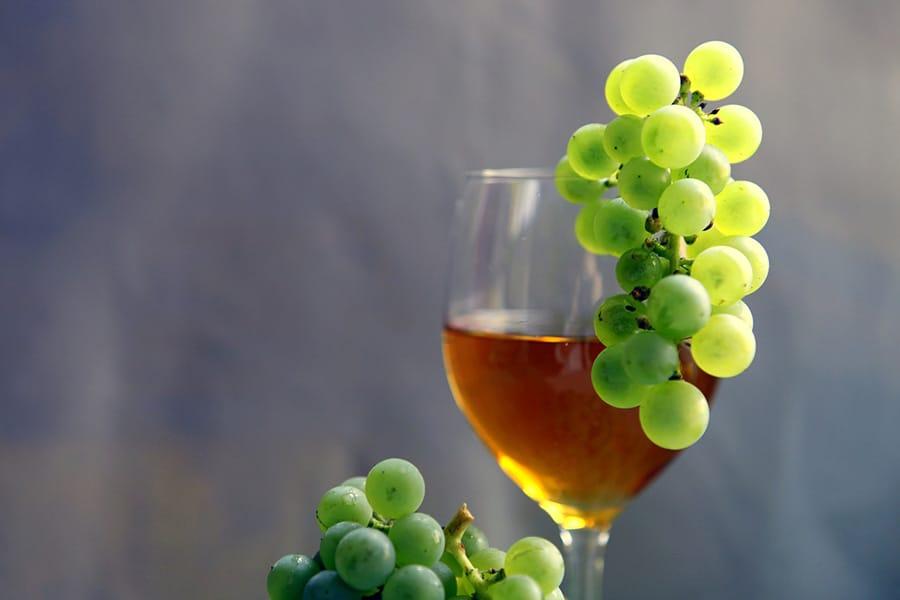 Un vin bio
